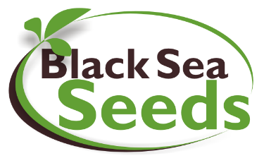 Vacature Black Sea Seeds